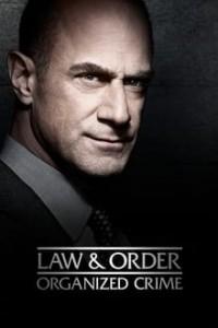 Law & Order: 2x6